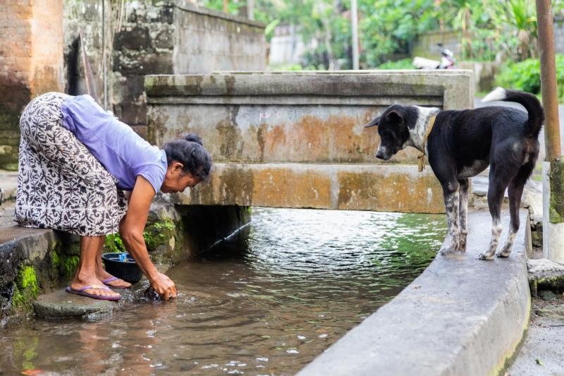 Shared water stream