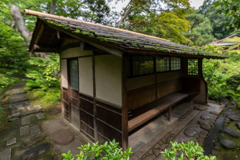 Japan-19