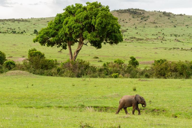 Kenya-15