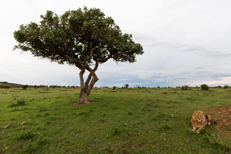 Kenya-3