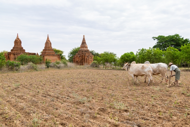 Myanmar-41