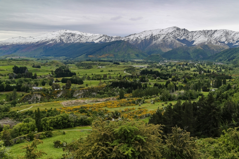New-Zealand-13