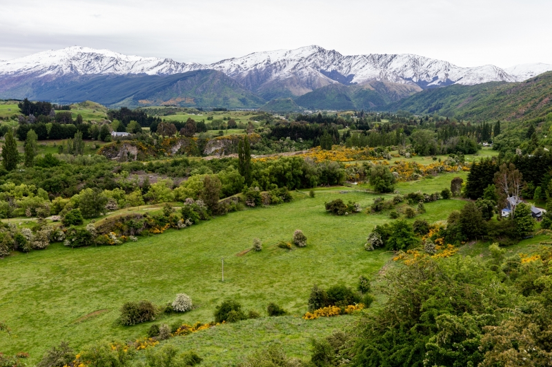 New-Zealand-9