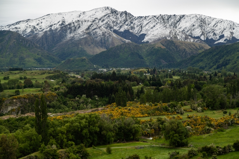 New-Zealand-10