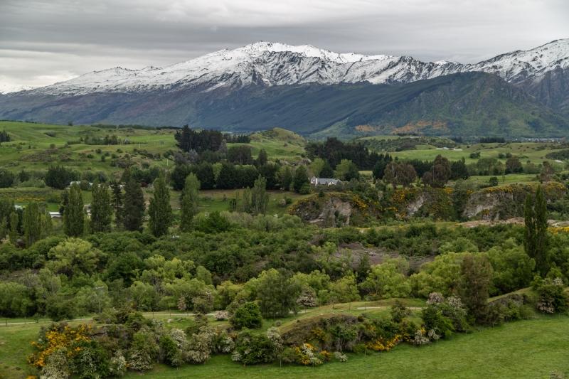 New-Zealand-11