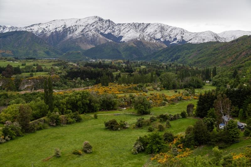 New-Zealand-12
