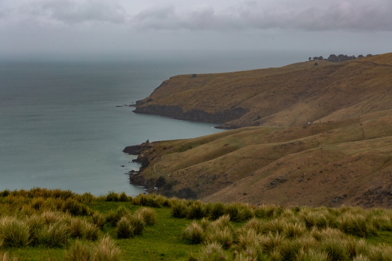 New-Zealand-2