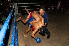 Fighters in Action